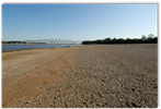 Beach on Mississippi River